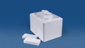 Trockeneis Scheiben 9 kg in der Thermo-Styroporbox